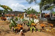 Cemetery at San Pedro del Rincón, Oaxaca covered in bouquets of marigolds and red flowers.