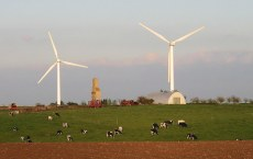 Large wind turbines framed against the sky with a small of Holstein dairy cows grazing in the foreground.