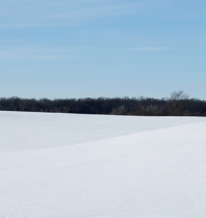 Snow convered fields against a blue sky.