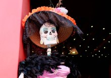 Dapper lady skeleton dressed in a bonnet, feather boa, and beautiful pink gown.