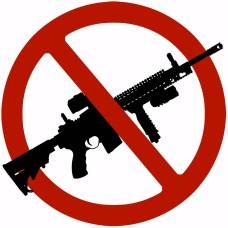 Ban Assault Rifles